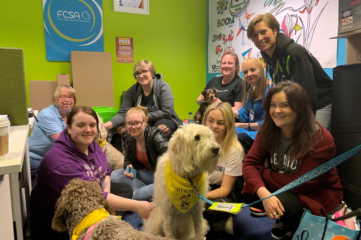 Therapets Lend a Paw to College Students During Exam Period